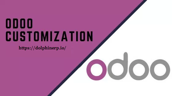 Odoo Customization Service